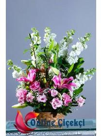 Sepette Rengarenk Mevsim Çiçekleri