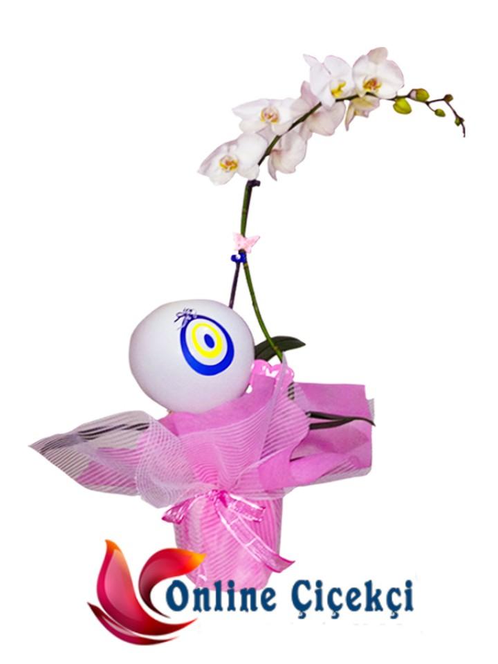 Kız Bebek İçin Saksı Orkide